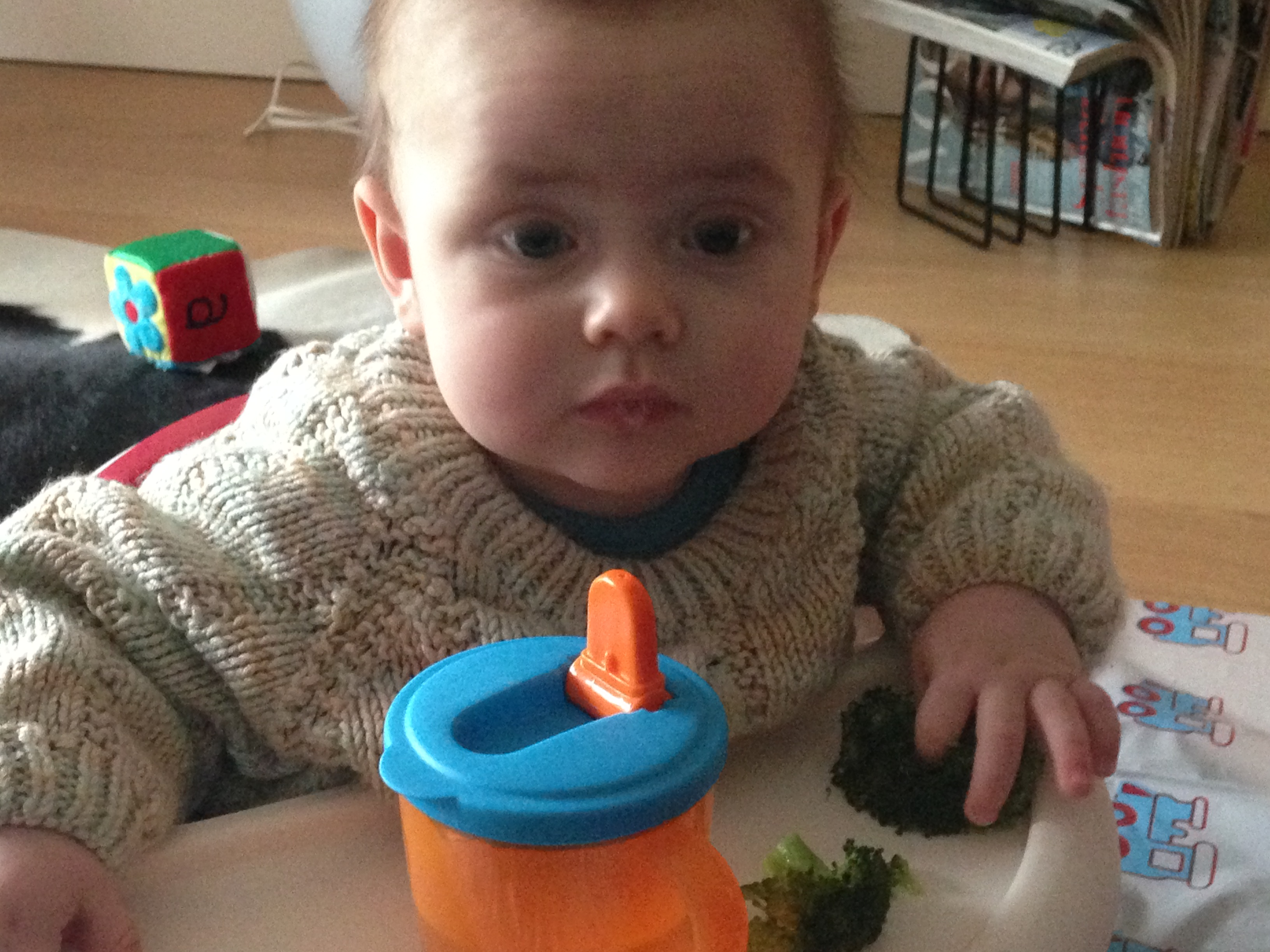 "The first ""taste"" of solid food. What is this stuff Mummy, and why am I in this seat?"