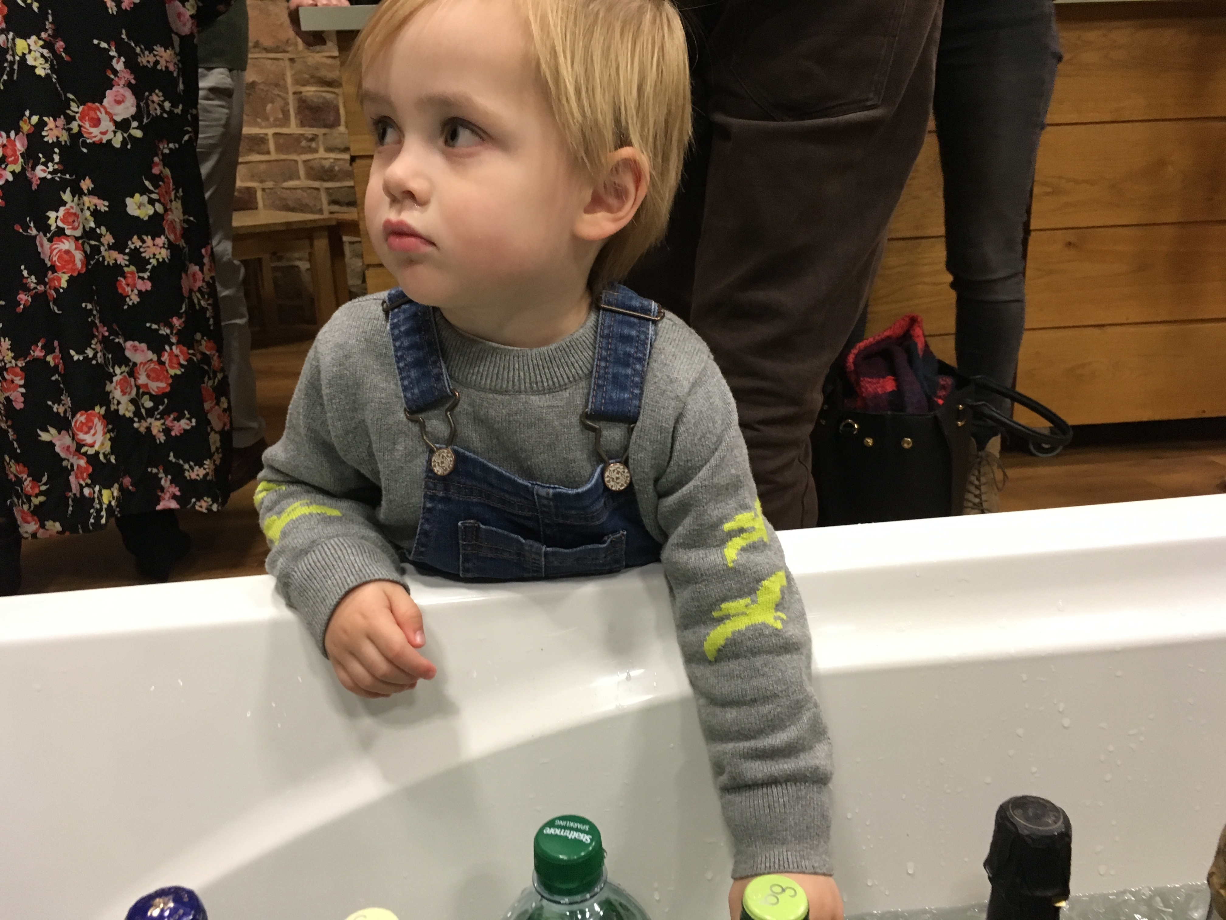 The Terrible Twos: This is Normal, Right?